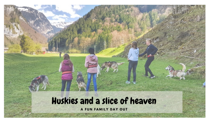 Huskies and a Slice of Heaven – Swiss Travel Special