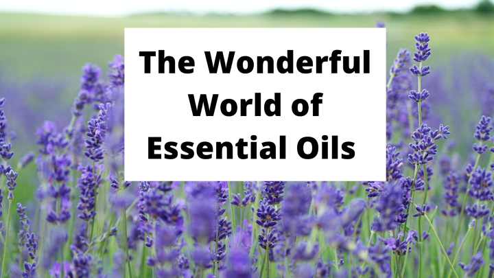 The Wonderful World of Essential Oils