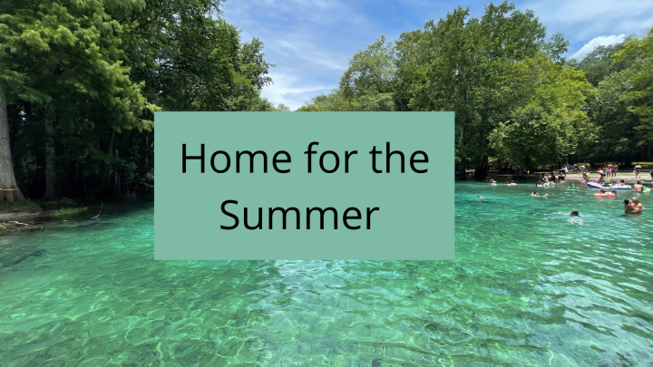 Home for the Summer: My Hot Covid Driven FloridaSummer